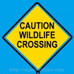 142 Wildlife Crossing