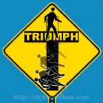 543 Triumph Or Tragedy