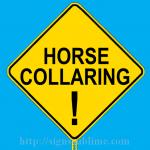 638 Horse Collaring